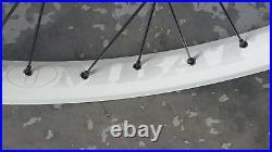 Halo COMBAT Disc (Rear) Wheel (26) QR Mountain Bike 8 9 10 speed (WHITE)